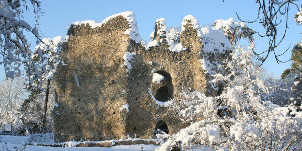 Castle Nick Roy